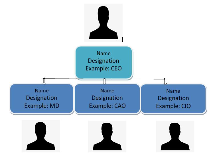 Company-management-hierarchy for comapny profile