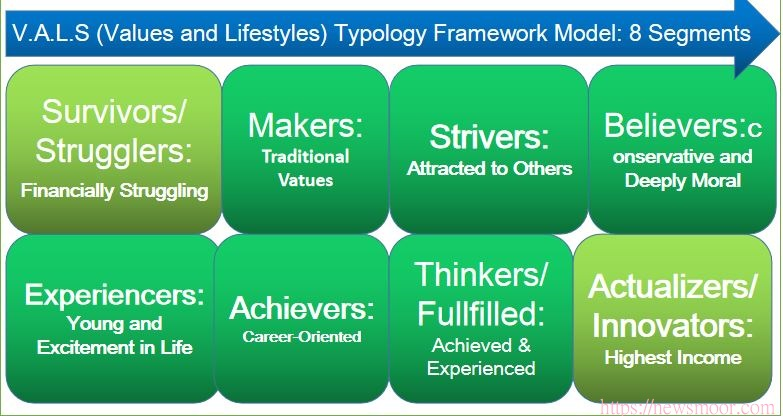 Target Audience Segmentation: V.A.L.S Typology Framework Model: